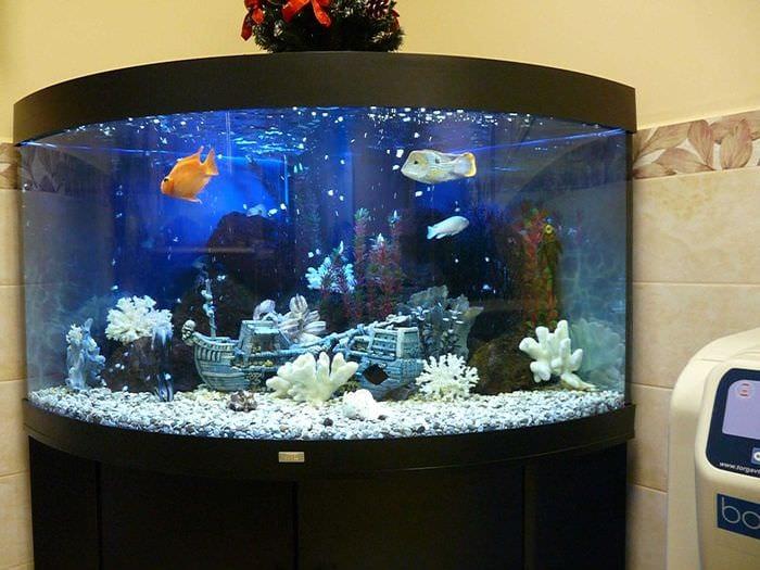 идея яркого декорирования аквариума