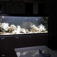 вариант яркого украшения аквариума фото