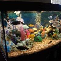 вариант оригинального оформления домашнего аквариума фото