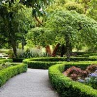 вариант необычного ландшафтного дизайна сада картинка