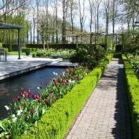 идея красивого ландшафтного дизайна частного двора картинка