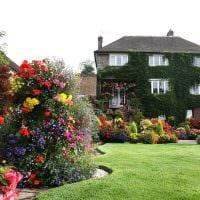 идея необычного декорирования двора частного дома фото