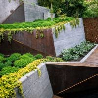 вариант красивого ландшафтного дизайна сада картинка