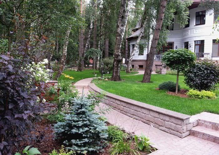 пример светлого ландшафного дизайна частного двора