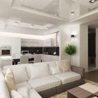 вариант красивого стиля гостиной комнаты 25 кв.м картинка