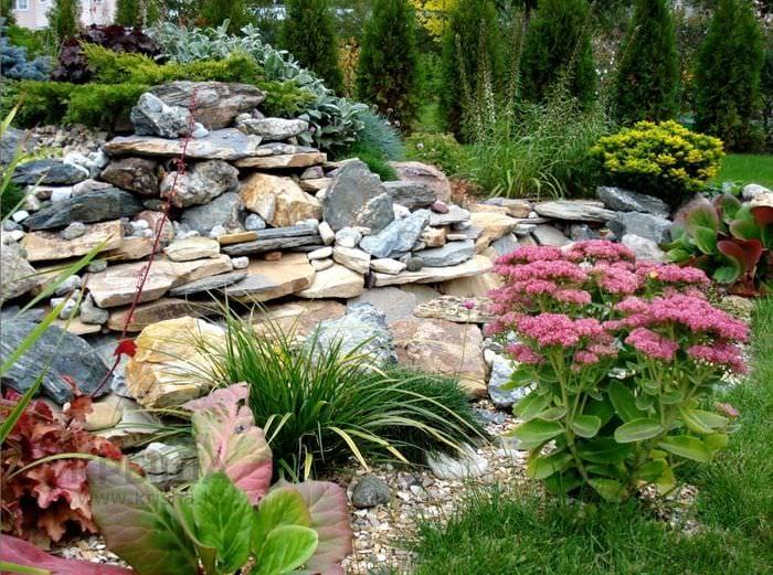 пример яркого ландшафного дизайна сада