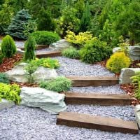 пример применения ярких растений в ландшафтном дизайне дачи картинка