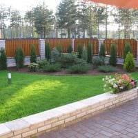 идея применения красивых растений в ландшафтном дизайне дома картинка