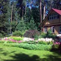 идея использования ярких растений в ландшафтном дизайне дачи фото