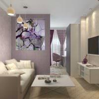 вариант яркого стиля гостиной спальни 20 кв.м. картинка