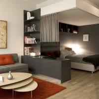 идея необычного дизайна спальни гостиной картинка