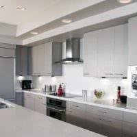 идея использования необычного интерьера кухни картинка