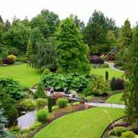 пример использования необычных растений в ландшафтном дизайне дома картинка