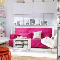 вариант использования розового цвета в ярком дизайне квартире фото