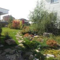 пример использования необычных растений в ландшафтном дизайне дачи фото