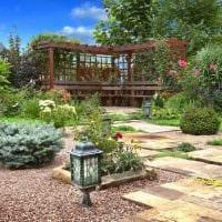 идея применения красивых растений в ландшафтном дизайне дома фото