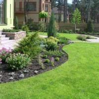 пример использования красивых растений в ландшафтном дизайне дома картинка