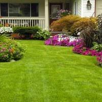 пример применения светлых растений в ландшафтном дизайне дачи картинка