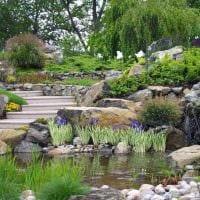 вариант применения ярких растений в ландшафтном дизайне дома картинка