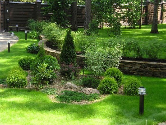 пример применения красивых растений в ландшафтном дизайне дачи
