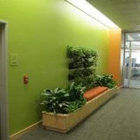 пример применения зеленого цвета в красивом дизайне комнаты картинка