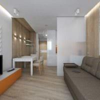 идея светлого стиля гостиной спальни 20 кв.м. картинка