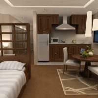 вариант красивого интерьера спальной комнаты 18 кв.м. фото