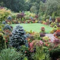 вариант использования ярких растений в ландшафтном дизайне дома фото