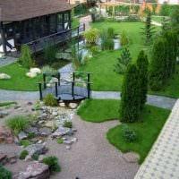 вариант применения красивых растений в ландшафтном дизайне дома фото