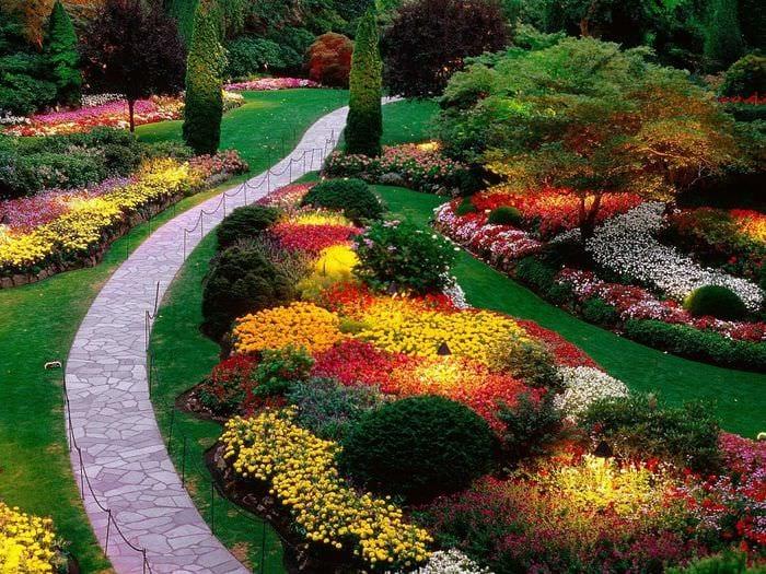 вариант применения светлых растений в ландшафтном дизайне дома