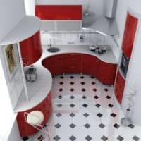 встроенная мебель дизайн малогабаритной кухни