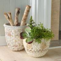 декор из ракушек горшки для цветов
