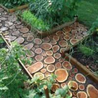 вариант использования необычных садовых дорожек в дизайне двора картинка