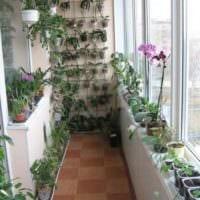вариант применения красивых идей оформления зимнего сада фото