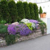 пример яркого декора палисадника в частном дворе фото