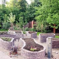 идея яркого дизайна огорода на даче фото