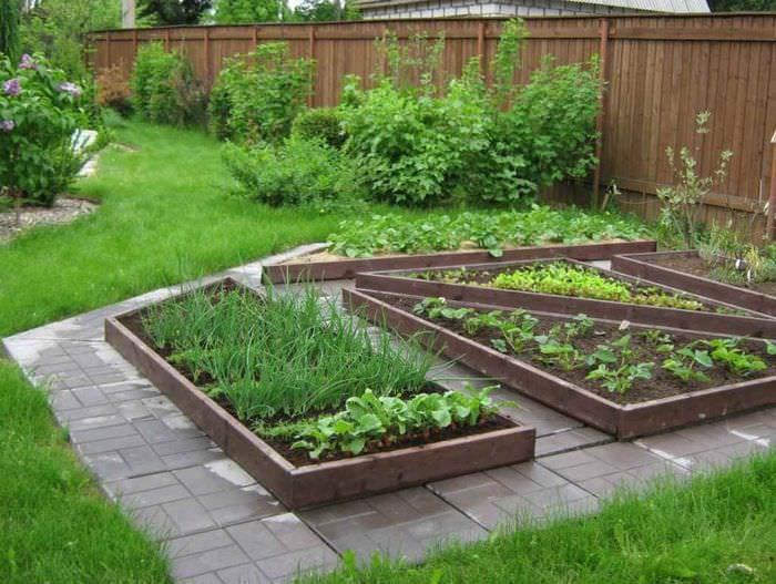 идея красивого дизайна огорода на даче