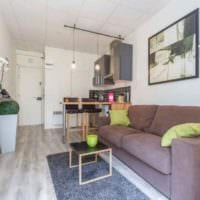 пример светлого декора квартиры студии 26 квадратных метров картинка