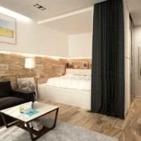идея необычного стиля квартиры студии 26 квадратных метров фото