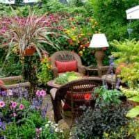 идея использования красивых роз в дизайне двора картинка