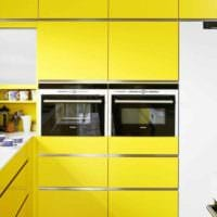 пример применения светлого желтого цвета в дизайне комнаты фото
