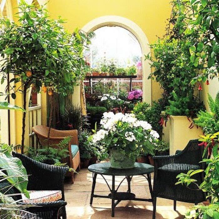 идея использования ярких идей оформления зимнего сада
