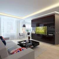 вариант светлого декора квартиры студии 26 квадратных метров фото