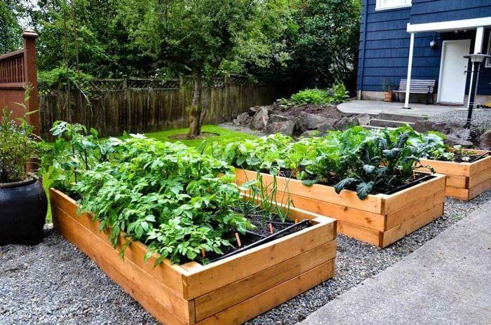 идея яркого декора огорода на даче