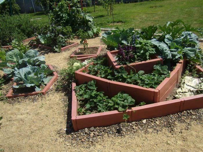 пример красивого дизайна огорода в частном дворе