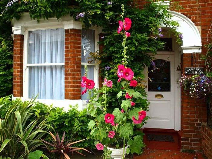 вариант красивого декора палисадника в частном дворе