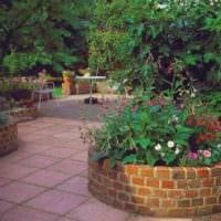 вариант необычного декора огорода на даче картинка
