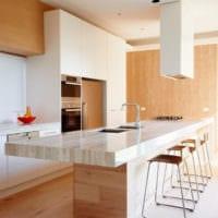 кухня в стиле модерн идеи интерьера
