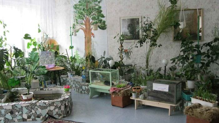 пример использования необычных идей оформления зимнего сада в доме