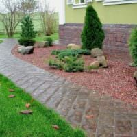 вариант использования ярких садовых дорожек в ландшафтном дизайне фото